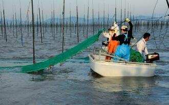有明海で始まった養殖ノリの種付け作業=18日午前、佐賀市沖(代表撮影)