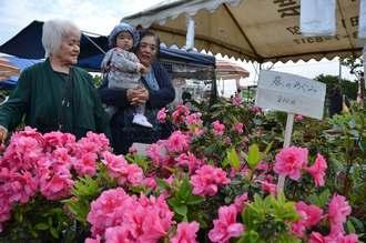 植木市を家族で楽しむ来場者=2日、沖縄市農民研修センター