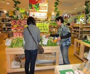 県物産公社は県外のわしたショップ8店舗で、県産野菜を期間限定で販売している=13日、札幌わしたショップ
