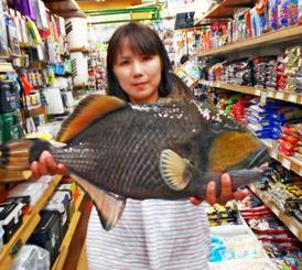 国頭村海岸で52センチ、2.9キロのゴマモンガラを釣ったディキンソン真由美さん=9月16日