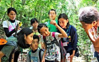 にぶちの森で見つけたキノボリトカゲをのぞきこむ隊員たち=29日、久米島