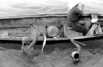 海に素潜りで入り、地元でウーギンと呼ぶ、先端にかえしのない銛(もり)で仕留めた魚をサバニに上げる漁師たち。魚は鋭い口先を持つダツ。光に反応して突進する性質がある。今も漁船に乗る玉城亀助さん(85)ら複数の人によると、「豊漁とともに、ダツよけをお願いする祭祀(さいし)、ヒーダチの御願があった」と話す。糸満市史によると旧暦4月10日以前の吉日を選んで執り行われた。(写真:朝日新聞社)