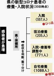県の新型コロナ患者の療養・入院状況(30日時点)