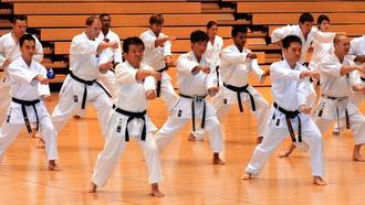 団体演武で気迫のこもった形を披露するセミナー参加者=27日、県立武道館(長崎健一撮影)