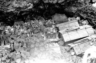 久高島では西海岸の崖の陰で、遺体を納めた木棺を置き、12年に1度、とら年の旧暦10月20日に一斉に棺(ひつぎ)を開け、遺族が洗骨した。棺の上のわらじや杖は、死者が無事に彼岸にたどり着けるようにという意味がある。骨は、写真中央に見える陶器や石でできた家型の「厨子甕(ずしがめ)」などに納め、正式な墓所に葬った(写真:朝日新聞社)