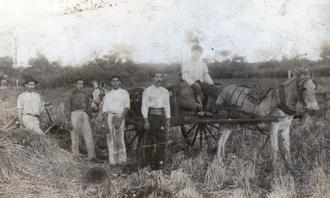 移民先のブラジルで写真に納まる宜保弘齊さん(右から2人目)。現地での様子を沖縄の家族に伝えるものだった可能性がある=1908~11年ごろ(豊見城市教委提供)