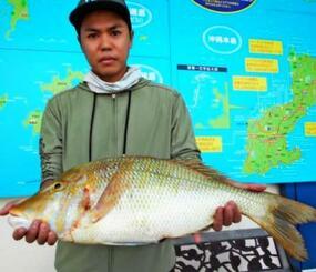 浜比嘉島で65センチ、3・3キロのタマンを釣った安慶田正樹さん=6日