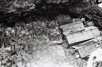【風葬】好奇のまなざし「事件」ひきおこす かつての墓所、覆う緑