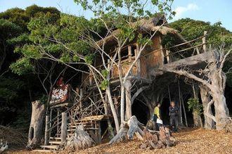森にとけ込みノグチゲラの鳴き声も近くに聞ける鬼太郎ハウス=国頭村安波・やんばる学びの森(2009年4月30日)