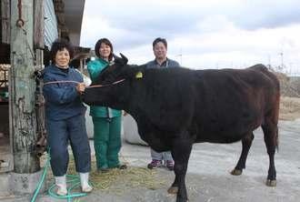 出荷前の「ななの2号」と、永山愛子さん(左)、息子の和樹さん(右)と妻のゆかりさん=伊江村東江前