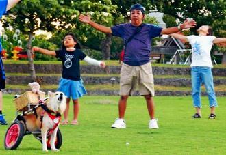 毎朝のラジオ体操会で、体操の掛け声に合わせて鳴き声を上げる車いす犬の「まおちゃん」=石垣市新栄町の新栄公園