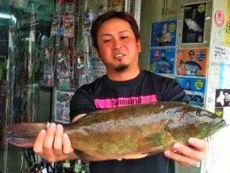 安波海岸で51.5センチ、1.87キロのアカジンを釣った金城孝さん=12日