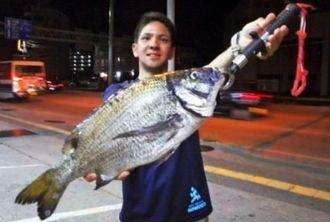 本部新港で48・8センチのミナミクロダイを釣った湧川朝則さん=4月19日