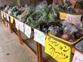 地域の野菜が格安で購入できます。