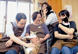 保護された猫を抱きながら、笑顔を浮かべる「猫雑貨&カフェfukufuku」のスタッフら=20日、南城市知念の同店