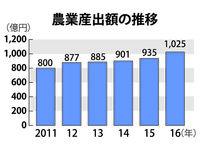 沖縄の農業産出額、21年ぶり1千億円突破 2016年は1025億円 増えた要因は?