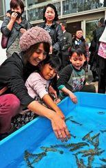 クルマエビのつかみ取りを楽しむ子どもたち=20日、那覇市久茂地のタイムスビル