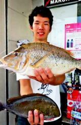 国頭海岸で50・3センチ、1・68キロのタマンを釣った金折貴洋さん=12日
