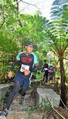 ヒカゲヘゴが茂る森を駆け抜けるランナー=14日午後、国頭村(落合綾子撮影)