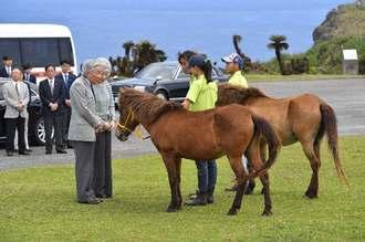 初めて与那国島を訪問し、東牧場で与那国馬をご覧になる天皇、皇后両陛下=2018年3月28日午後0時25分、与那国町(代表撮影)