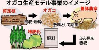 オガコ生産モデル事業のイメージ