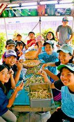 鞘をむいてマメを出す子どもたち=17日、浦添市西原のわくわく農園
