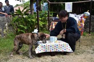 上江洲睦さんに見守られながら、犬用のバースデーケーキを食べる海君=2日、南城市のおきなわワールド