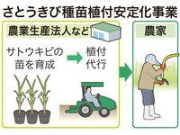 サトウキビの苗生産・植え付け、沖縄県が支援 農家の負担軽減で増産目指す