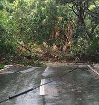 沖縄・久米島で記録的大雨、3時間184ミリ 土砂崩れで県道寸断
