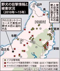 野犬の目撃情報と被害状況(2010年~15年)