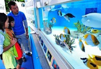 色鮮やかな魚たちを見学する子どもたち=イリーゼ八重瀬