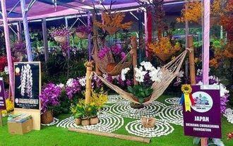 ラン・盆栽の国際展示会で1位に選ばれた沖縄美ら島財団の出展作品=マレーシア・クアラルンプール(同財団提供)