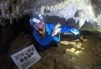 鍾乳石の状態を確認する浦田健作さん(日本自然保護協会提供)