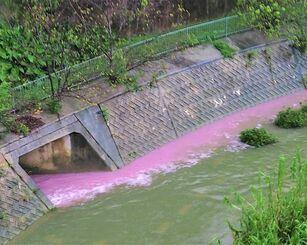 ピンク色の排水が流れ込んだ普天間川=24日午後5時40分ごろ、北中城村安谷屋(新垣善彦さん提供)