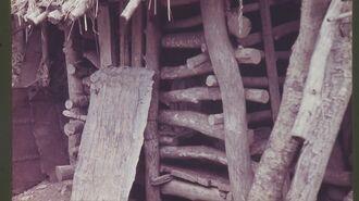 藤さんの小屋の写真。岡庭武さんが撮影した1964年5月1日時点で、13年私宅監置が続いていた(県精神保健福祉会連合会提供)