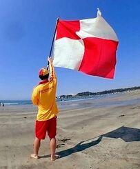 海岸で津波フラッグを振っているイメージ(日本ライフセービング協会提供)
