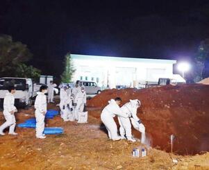 豚を埋めるための穴に消石灰を散布する作業員=8日午後6時45分ごろ、うるま市の埋却地