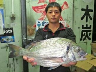 糸満海岸で46センチ、1・77キロのミナミクロダイを釣った具志堅翔さん=11月3日