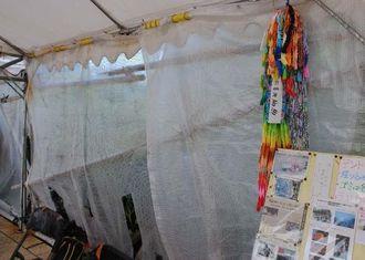 千羽鶴の左側にあったベニヤ板の展示物3枚が持ち去られた座り込みテント=24日午前、名護市辺野古