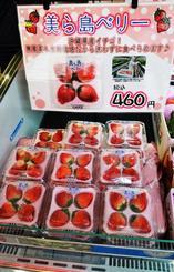 水耕栽培された無農薬イチゴ「美ら島ベリー」=9日、わしたショップ国際通り店