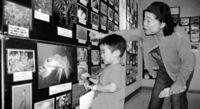 [きょうナニある?]/話題/大浦湾の生き物 写真展/27日まで 名護博物館