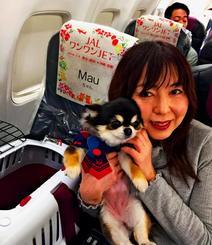 愛犬と一緒に機内でくつろぐ「JALワンワンJET」のツアー客(JAL提供)