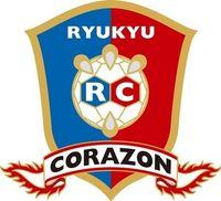 琉球コラソン8連敗 大同特殊鋼に21―22 日本ハンドボールリーグ