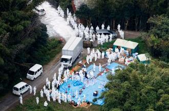 鳥インフルエンザが確認された福岡県宗像市の養鶏場で続く殺処分作業=25日午後3時17分(共同通信社ヘリから)