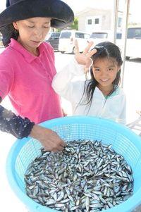 奥武島でスク水揚げ 少量も漁師ら一安心