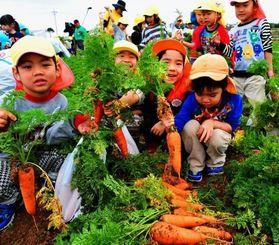 ニンジン収穫を楽しむ子どもたち=3日、糸満市喜屋武