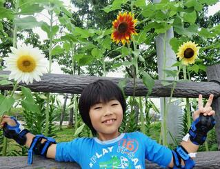白、茶、黄色の3色のヒマワリの前で笑顔の仲本晴瑠さん=4月29日、名護市・伊差川公園