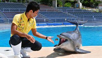 国内最長飼育更新中のミナミバンドウイルカのオキちゃんと飼育員の比嘉克さん=1日午後、本部町・海洋博公園(伊禮健撮影)
