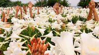 国内外で注目 「土の人」の山城知佳子 京都国際写真祭に参加へ