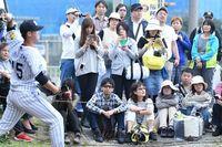 プロ野球沖縄キャンプ 2017年の経済効果は過去最高109億円 観客も最多34万人